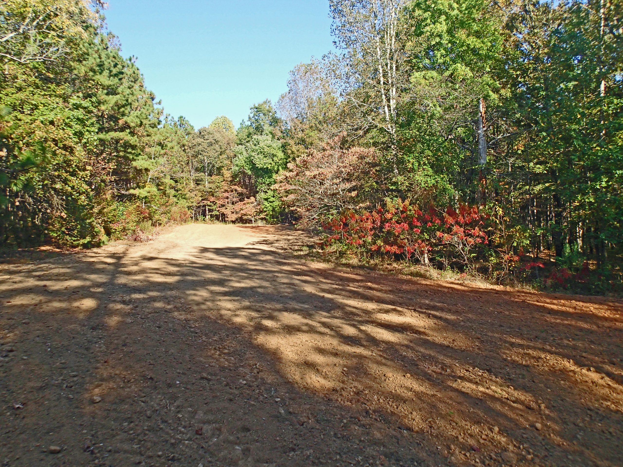 when to plant fall food plots for deer
