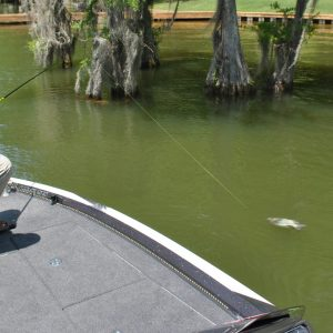 The Best Crappie Rod For One Pole Fishing
