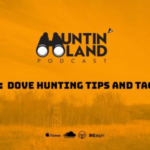 Dove Hunting Tips and Tactics