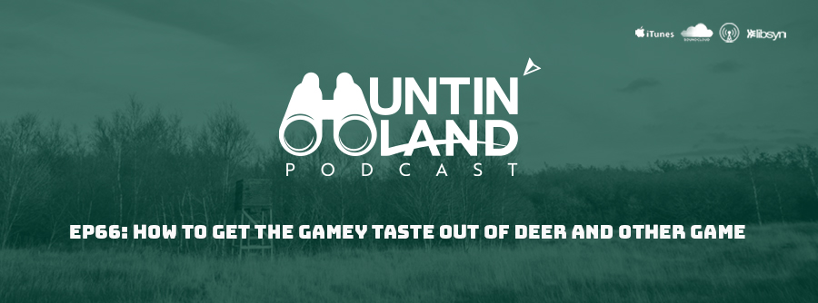 HLP Ep. 66 How to get the gamey taste out of deer and other game
