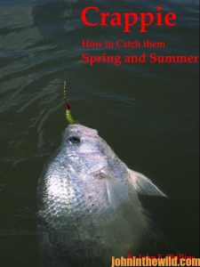 Crappie fishing book cover