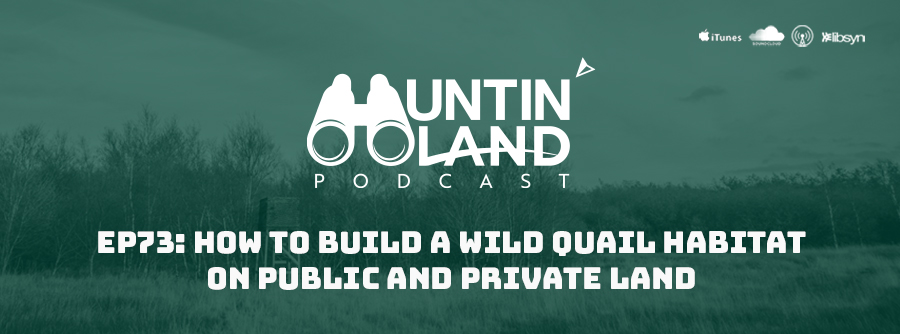 HLP EP 73 How To Build A Wild Quail Habitat One Public And Private Land