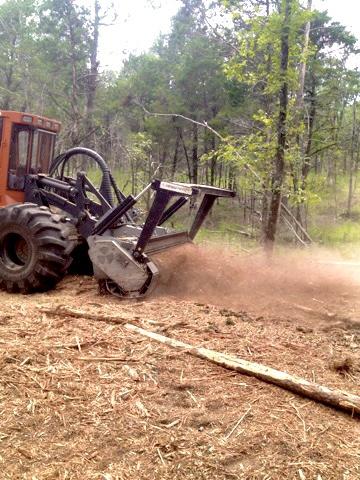 controlled burn for deer mulch
