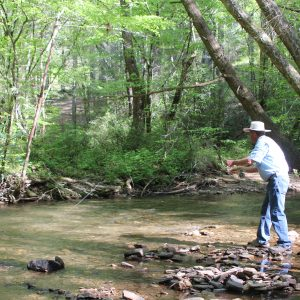 Fly Fishing for Beginners- Trout Fishing 101