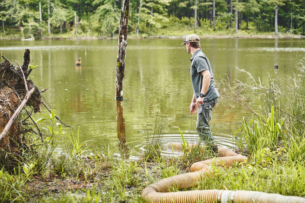 stocking a pond