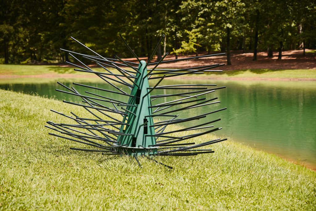 structure for a new pond