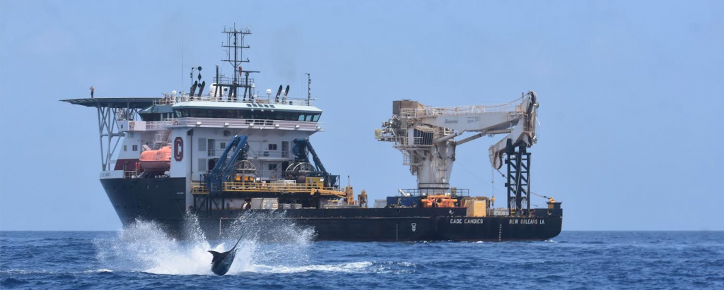 blue marlin and gas ship