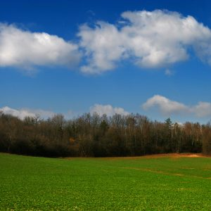 Ways To Make Money Investing in Land– Part One