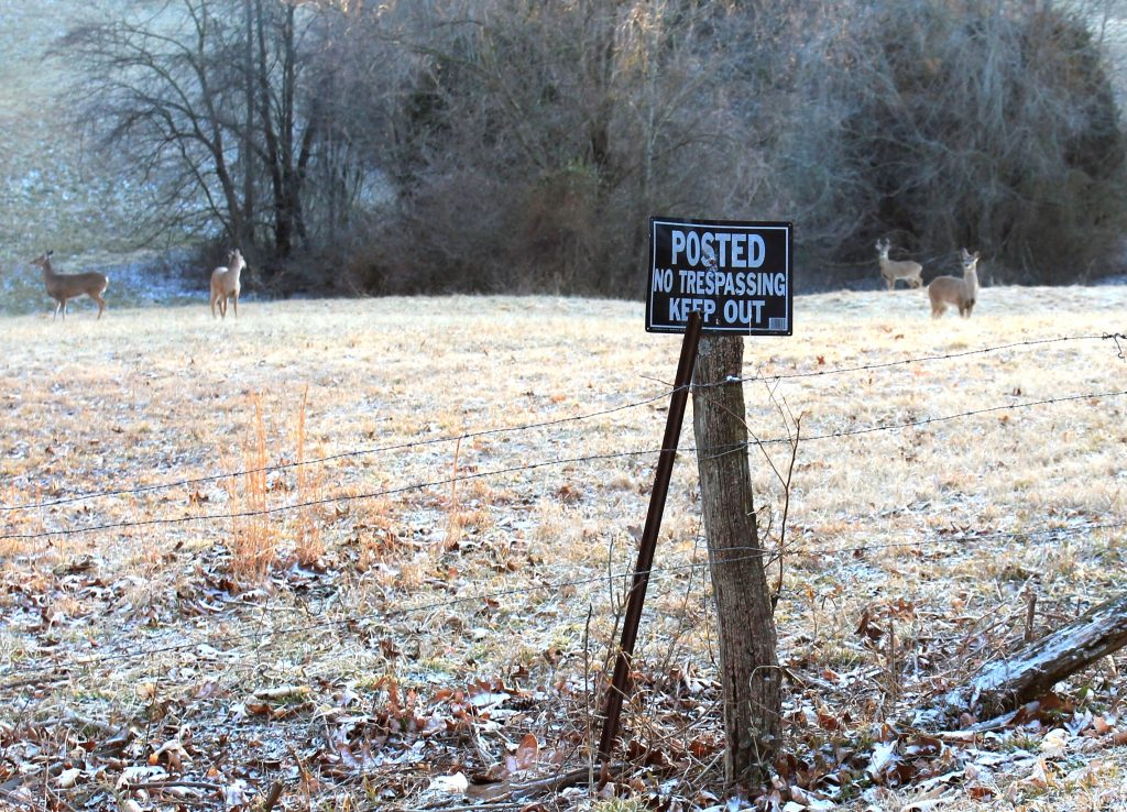 hunting land private property