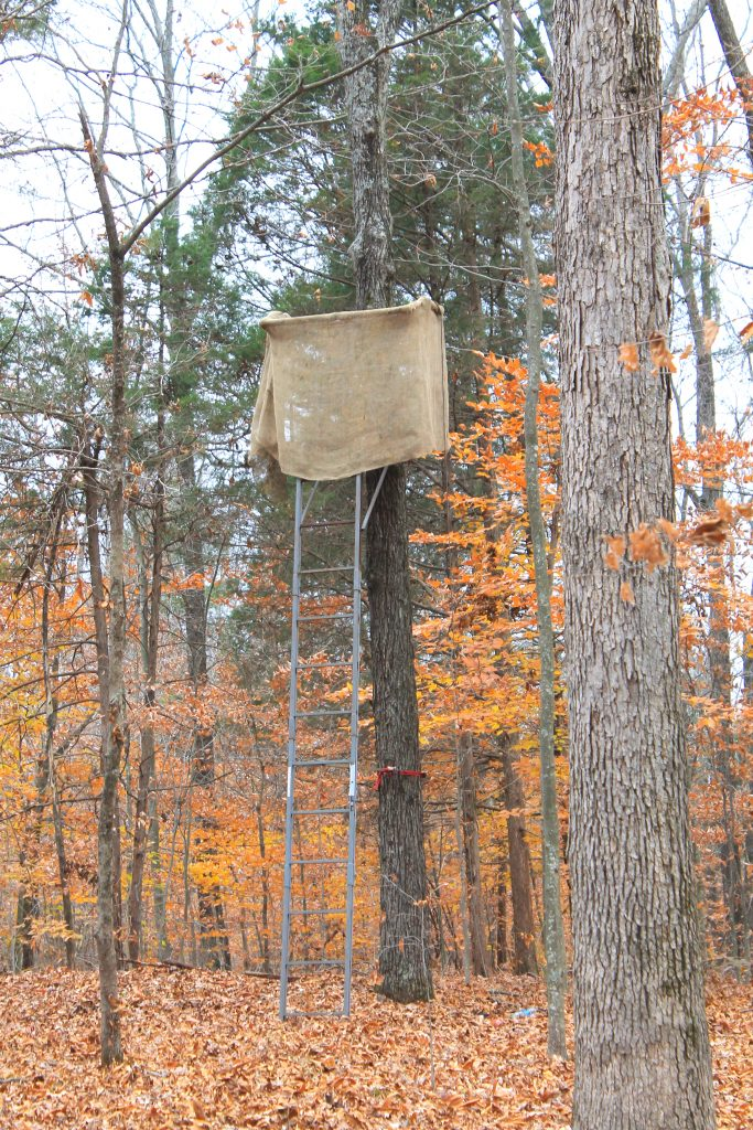 tree stand hunting lease insurance