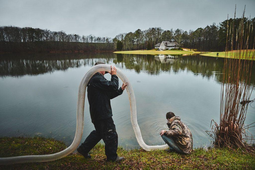 pond stocking cost