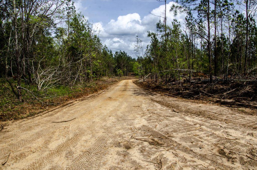 habitat management plan roads