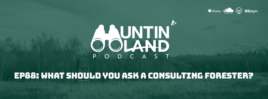 HLP EP 88 What Should You Ask A Consulting Forester
