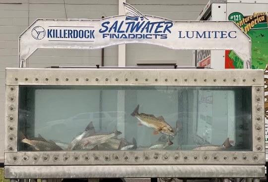killerdock fish tank
