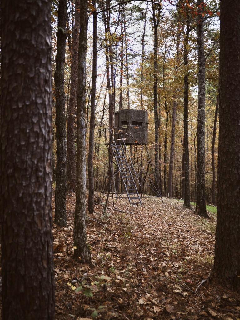 elevated deer hunting blind in the woods