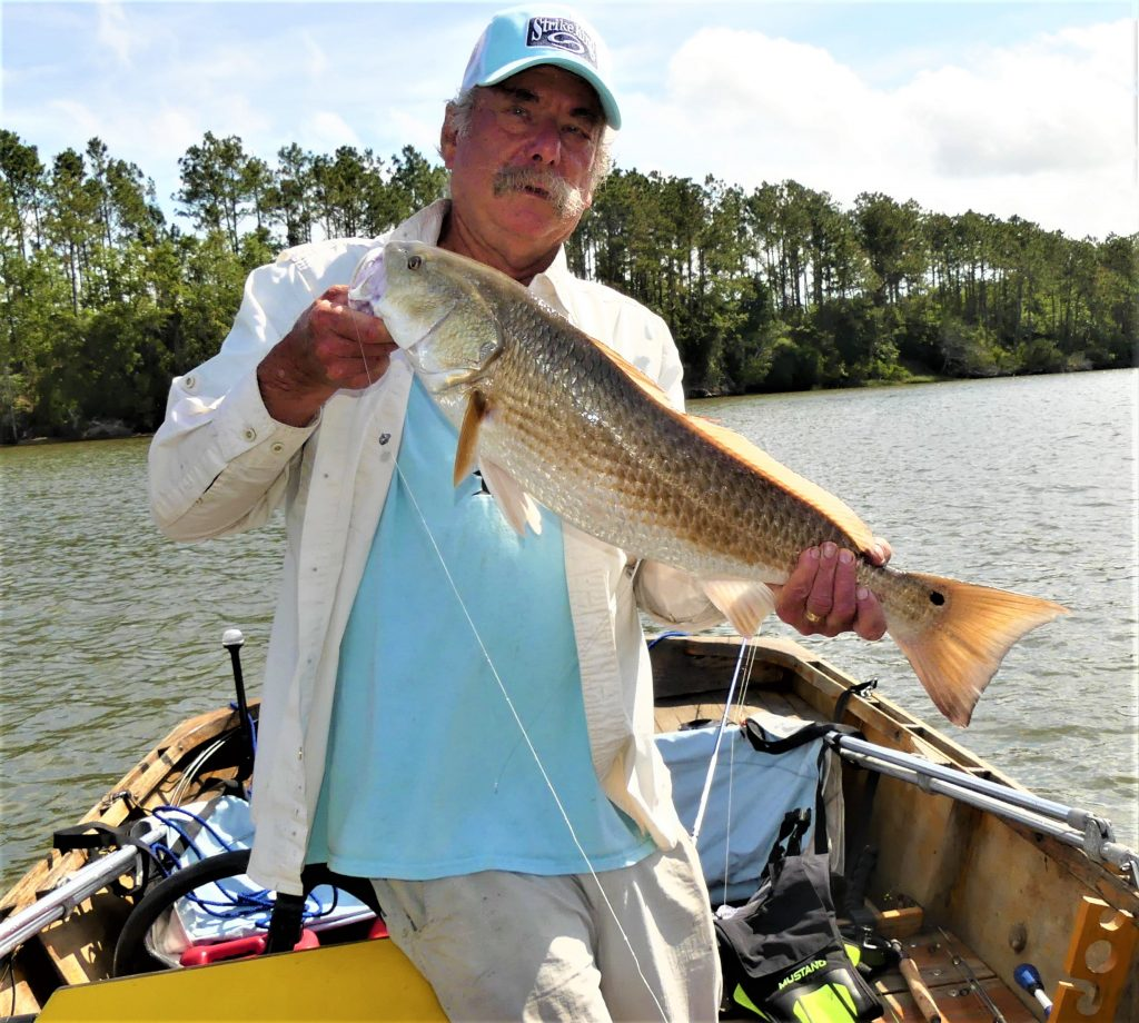 redfish caught on inshore fishing rod