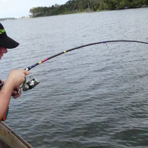 Selecting The Best Inshore Fishing Rods