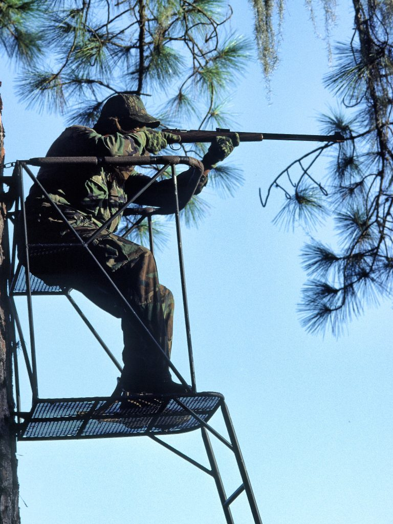 deer stand and muzzle loader